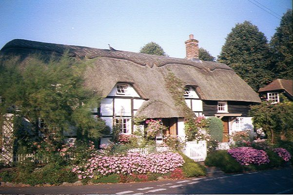 thatched cottage flue